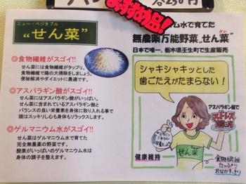 せん菜の説明.jpg